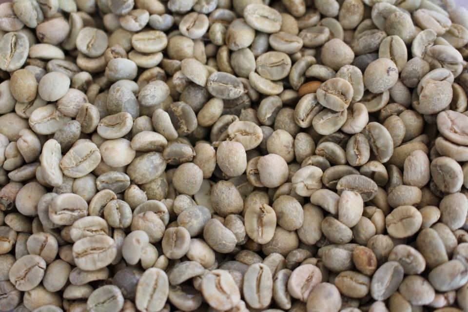 Beans Supplier